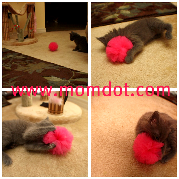 How to make a Tulle Pom Pom Ball DIY Tutorial | MomDot.com