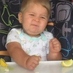 Baby Tries a Lemon