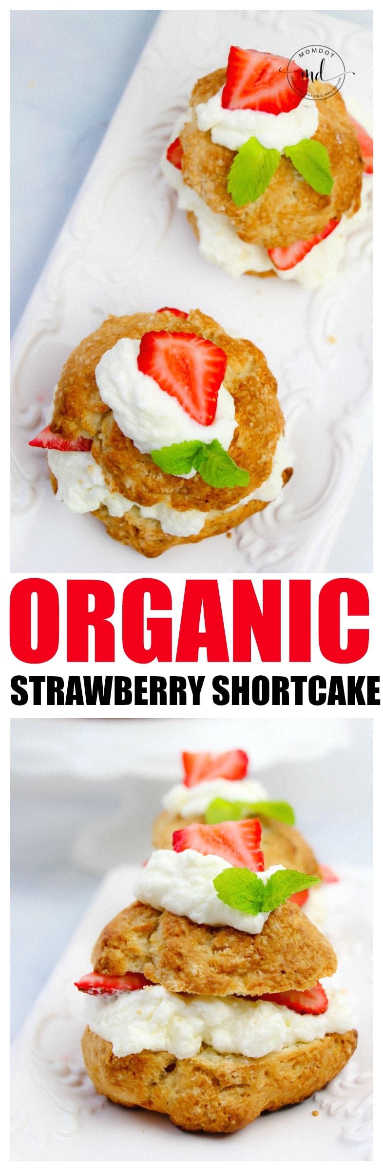 Simple Strawberry Shortcake Recipe | Organic Strawberry Short Cake | Dense Cake | Homemade whipped cream and strawberry sauce
