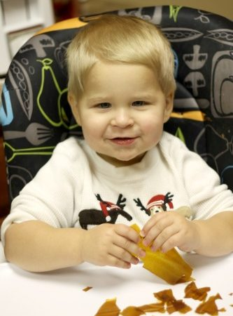 baby_food_recipes