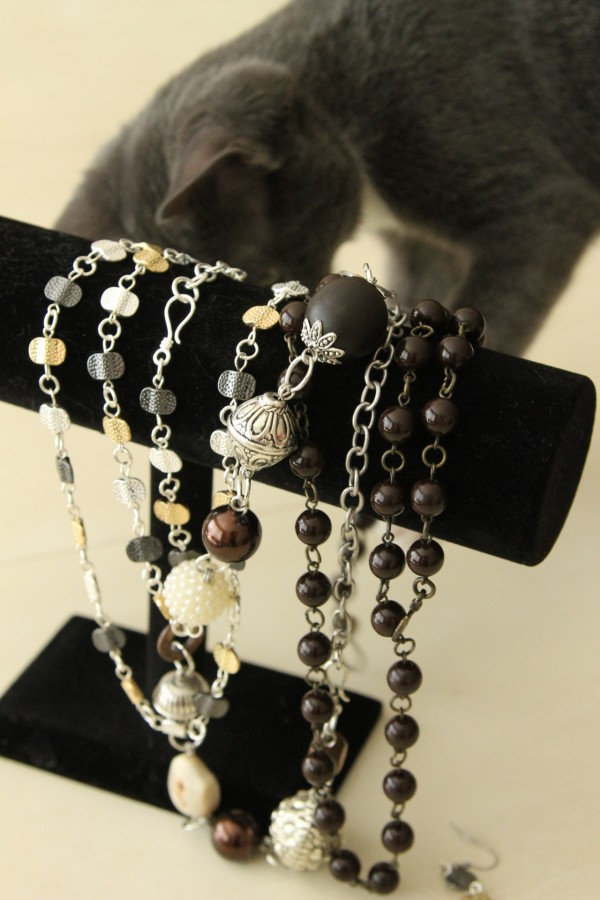 cat and jewelry