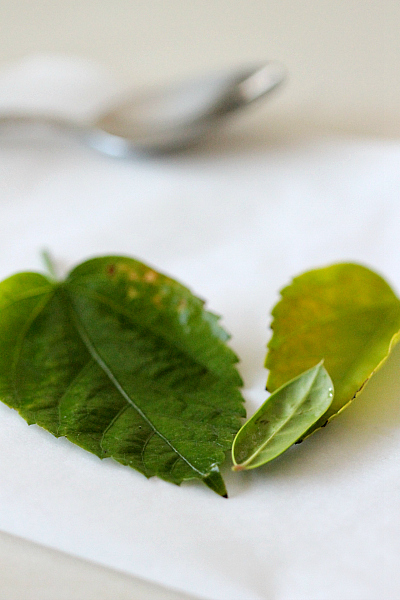 How to make chocolate leaves for decorating cupcakes and cakes