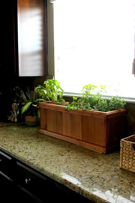 Growing an indoor living spice cabinet for Indoor gardening expo 2014