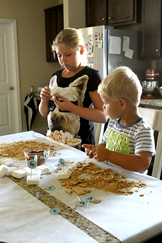 No Flame Anytime you want S'mores Bar, perfect for now or later, any age kid proof!