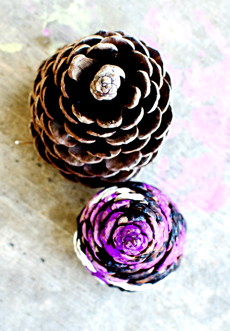 pine cone kids crafting