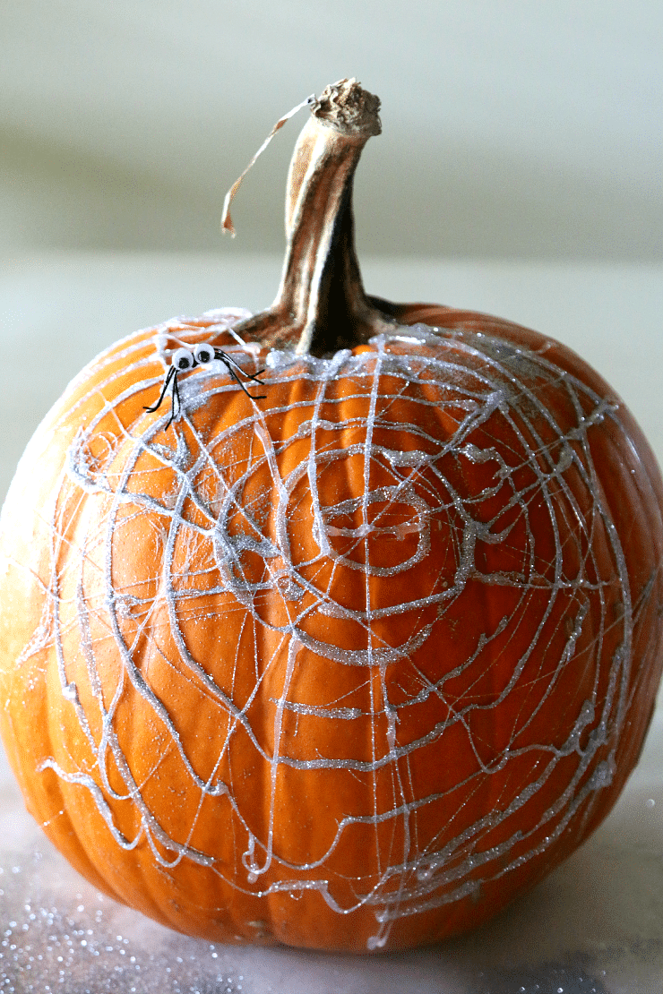 pumpkin with spider