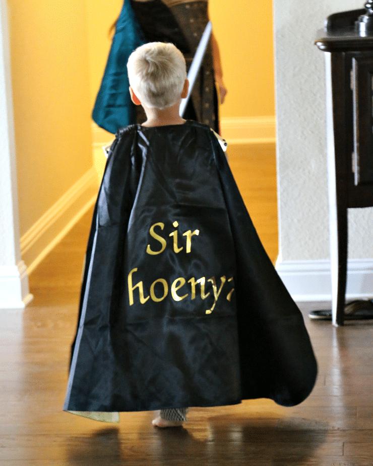 sir Phoenyx customized knights