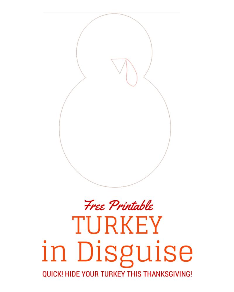 turkeyindisguise