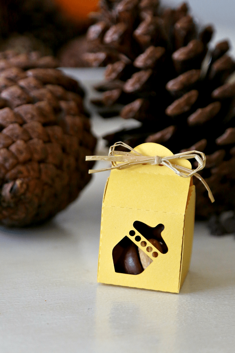 acorn cookie treatbags