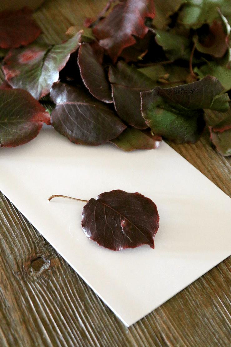 Leaf Turkey Craft - perfect Thanksgiving Kids Craft, plus adorable card