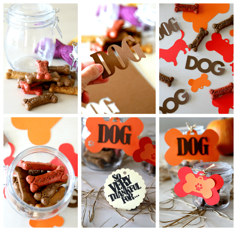 Thankful Treat Jars for Dogs DIY
