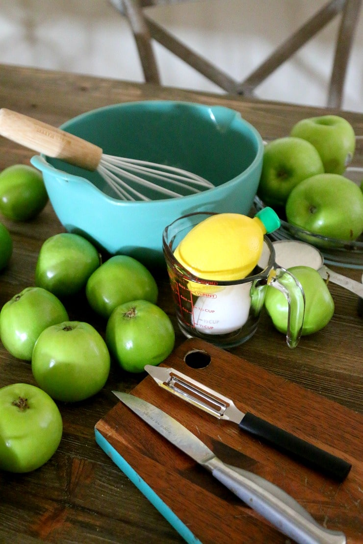 Best Apple Pie Recipe, serve with caramel and vanilla ice cream, get a step by step easy pie recipe for holiday