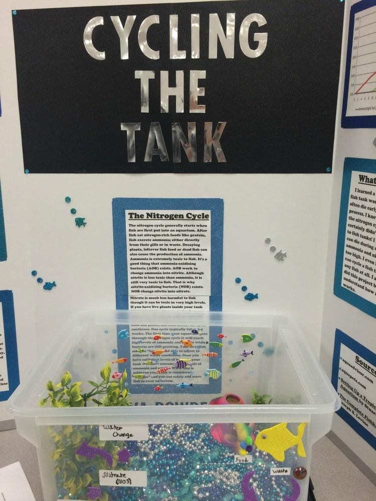Science Fair Project Ideas (20)