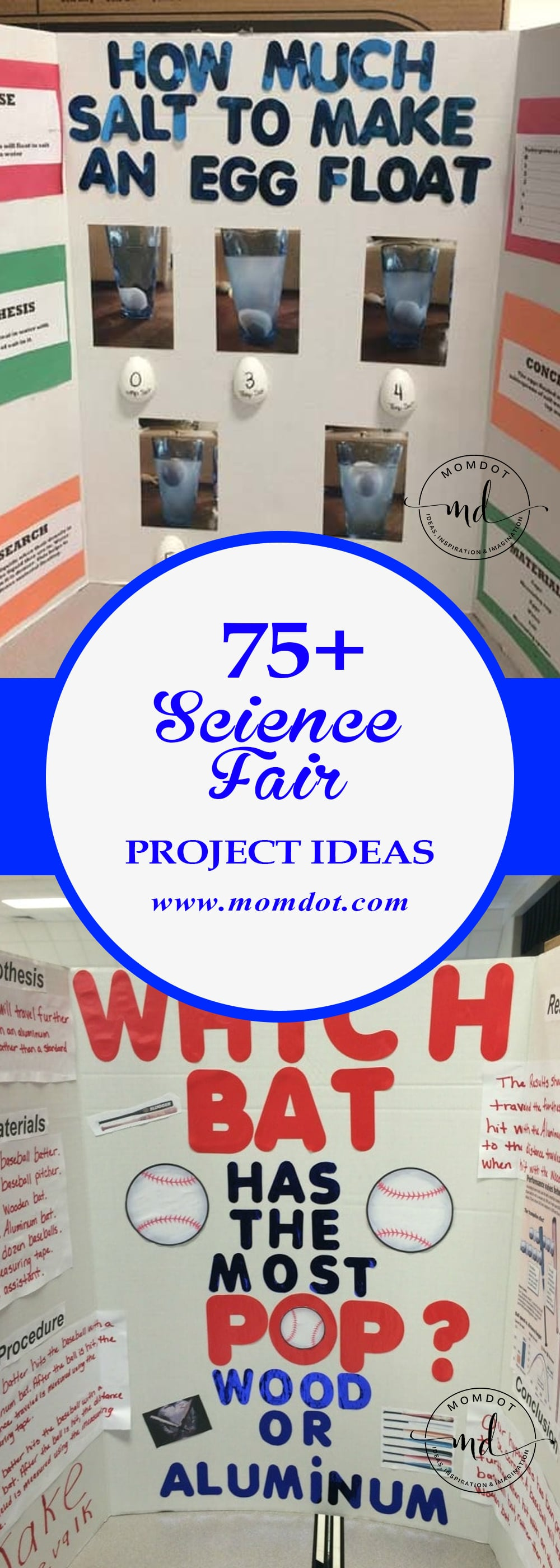 easy science fair projects for 8th grade