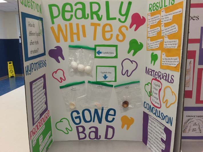 cool science fair projects for 8th graders Check out these fun 8th grade science fair projects and experiments we have a wide variety of science fair ideas for any interest.