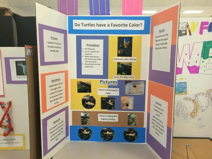 science fair ideas (50)