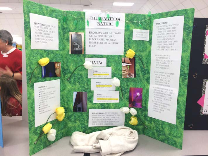list of science fair projects