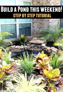 DIY a Front Yard Pond ( Phase #2)