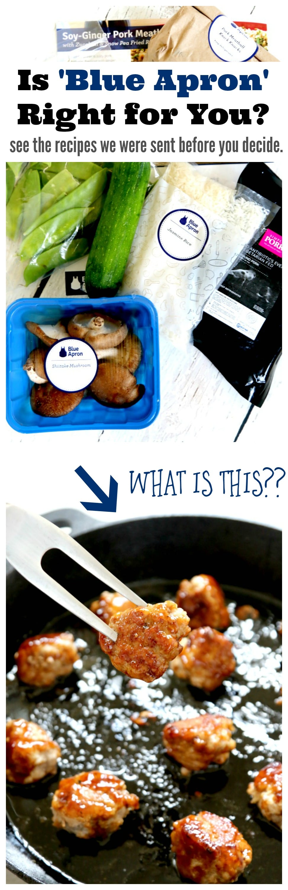 Blue Apron Recipe Reviews: Read this review BEFORE buying Blue Apron and see what kind of recipes they are sending, is this meal delivery service right for your family???