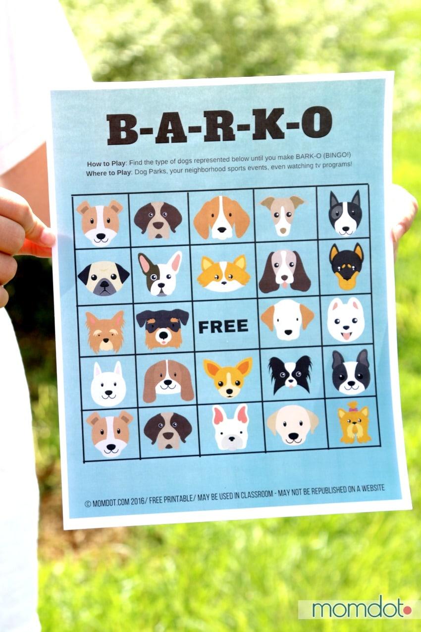 Dream Dog Park Program