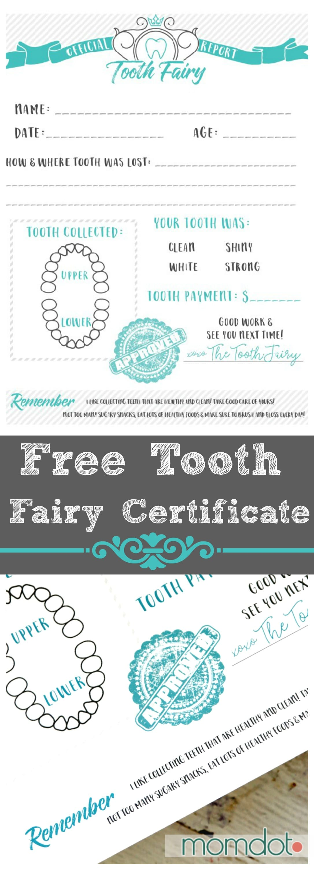 image relating to Tooth Fairy Printable named Enamel Fairy Totally free Printable Certification