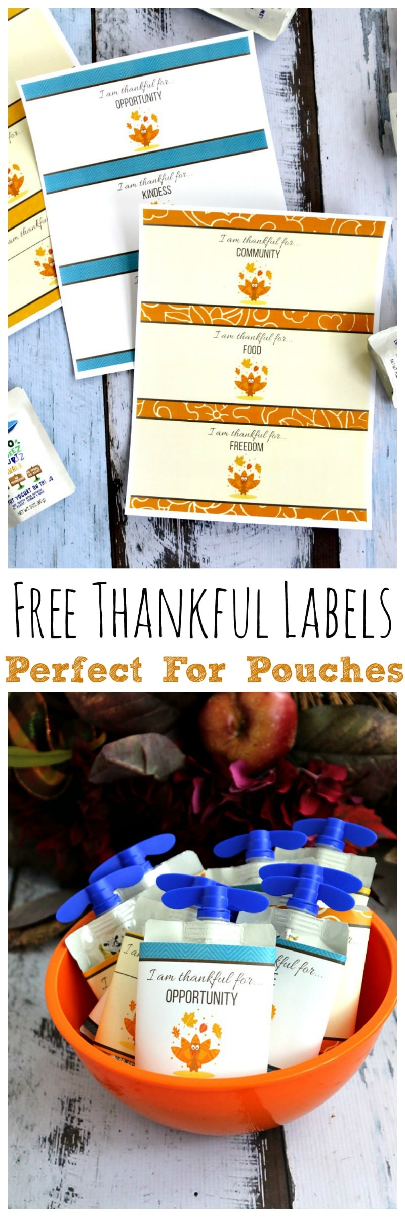 Free Thankful Labels (printable download) for applesauce and yogurt pouches, put in childs lunch for a fun note surprise to remind us what we are grateful for this season