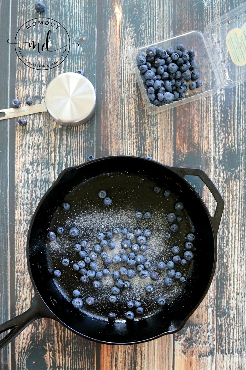 Grilled Cheese with Blueberries, a delicious alternative to a traditional lunch that kids and adults will both love to make and eat