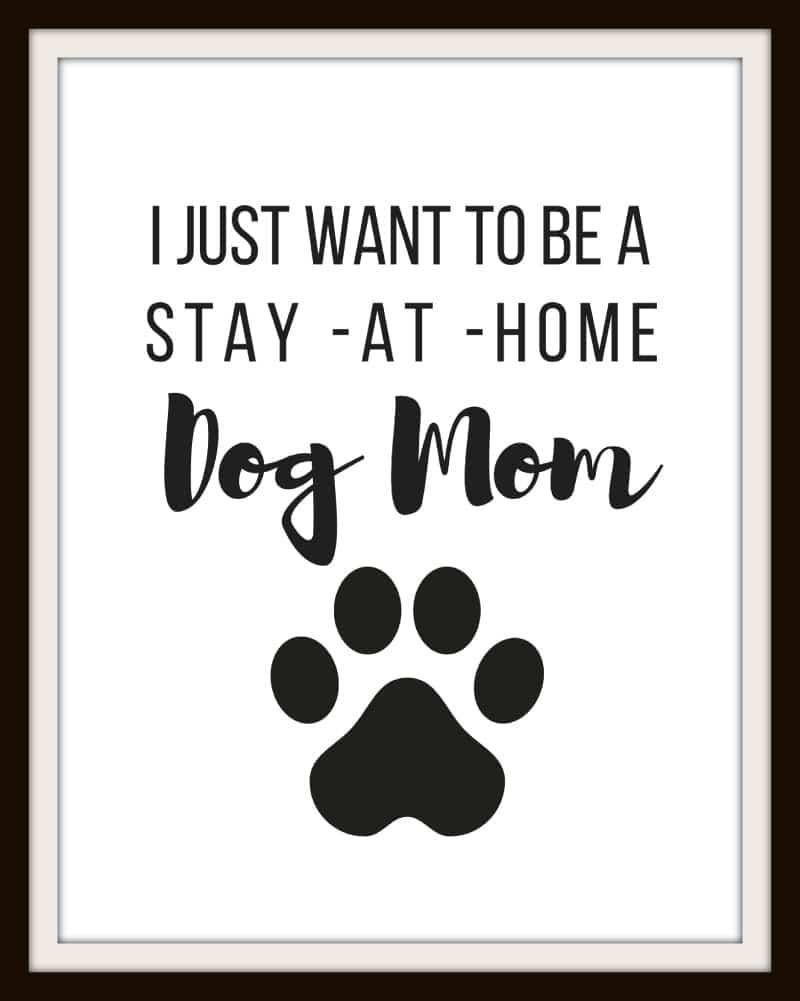 34a3fb68 I just want to be a Stay At Home Cat Mom | Free Printable -
