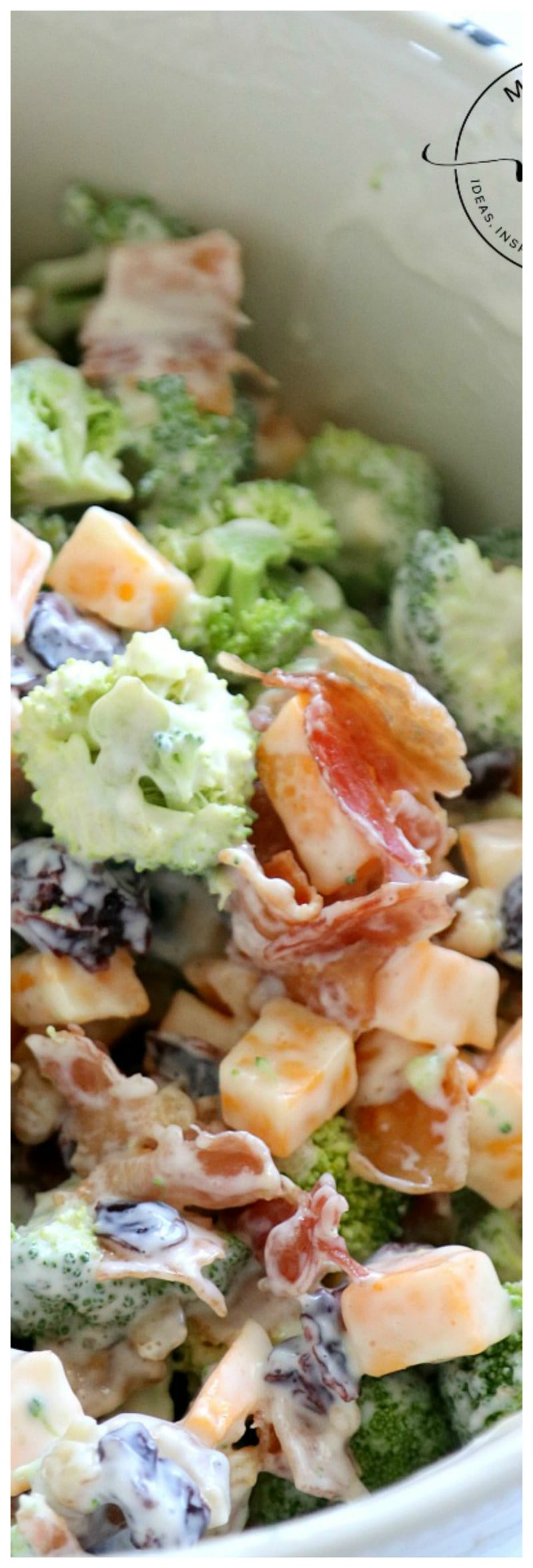 Easy Bacon Broccoli Salad: Grandma will Approve!