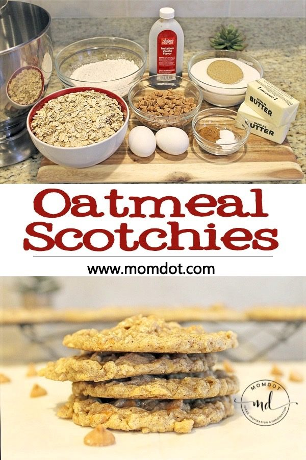 Oatmeal Scotchies: A Cookie Recipe Your Family Will Love